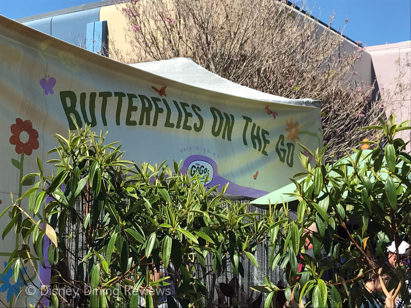 fgf17-butterfly-tent-entrance-sign